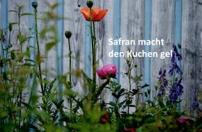 Jonathan Safran Foer – Hier binich